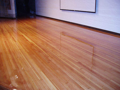 auditorium wood floor refinish